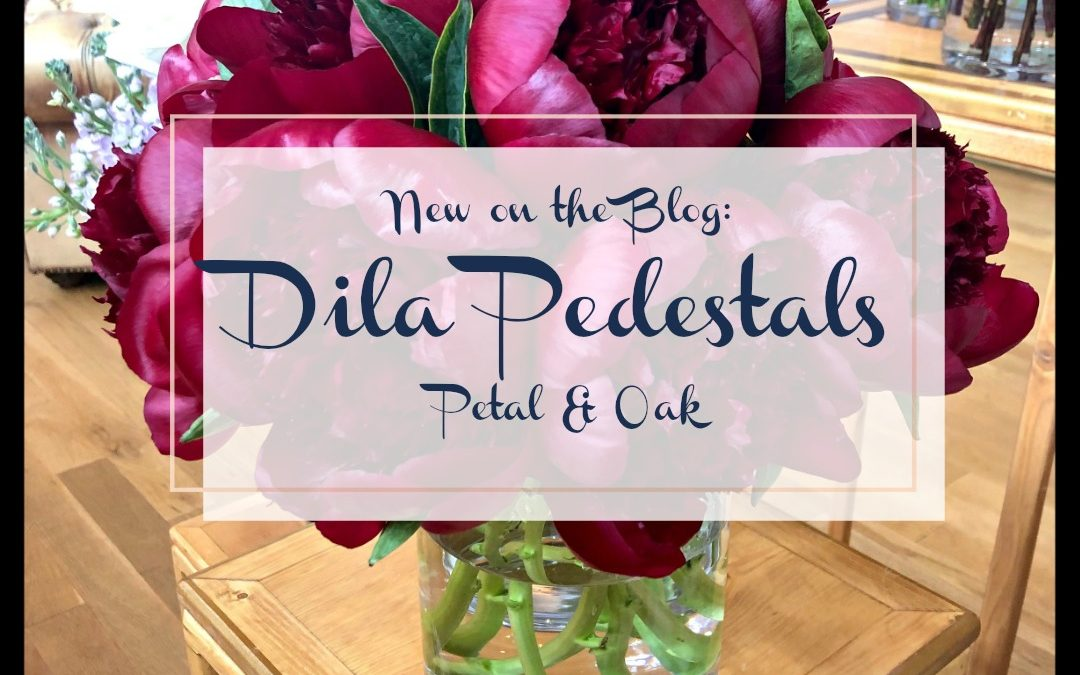 Dashing Dila